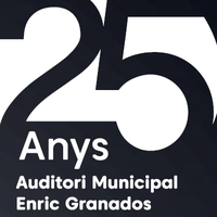 logo 25 anys auditori