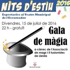 Gala de màgia de l'AMIL  a la plaça Esteve Cuito del Teatre Municipal de l'Escorxador