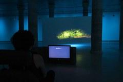 La Panera estrena el programa expositiu de l'Estiu 2021