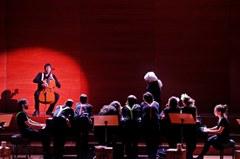 """LleidArt Ensemple presenta """"El Carnaval dels animals"""" a l'Auditori"""