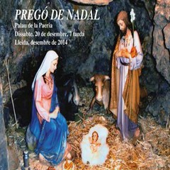 Cicle de Nadal a Lleida